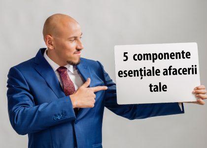 componentele esentiale ale afacerii tale